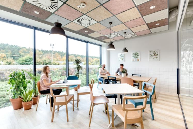 Gỗ cũng được sử dụng khá nhiều trong thiết kế không gian văn phòng tạo vẻ gần gũi với thiên nhiên.